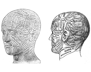 phrenology-head (by DoubleM2 on Flickr)